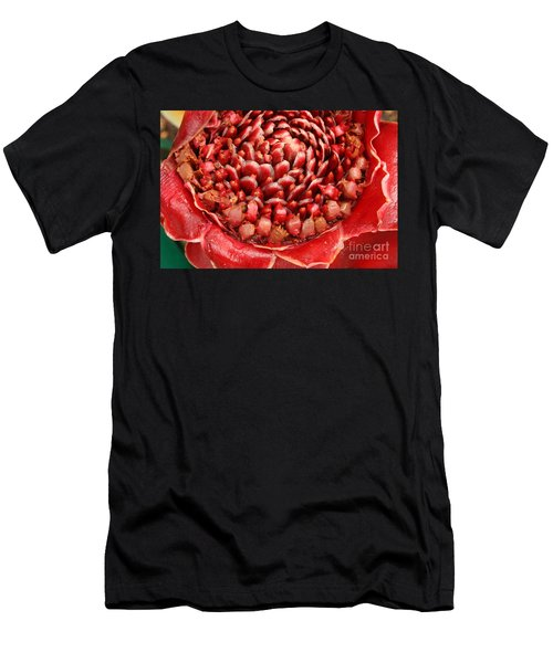 Torch Ginger 1 Men's T-Shirt (Athletic Fit)