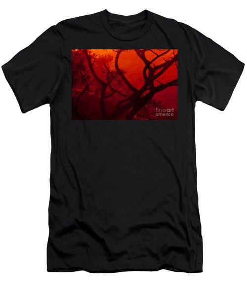 Torrey Pines Glow Men's T-Shirt (Athletic Fit)