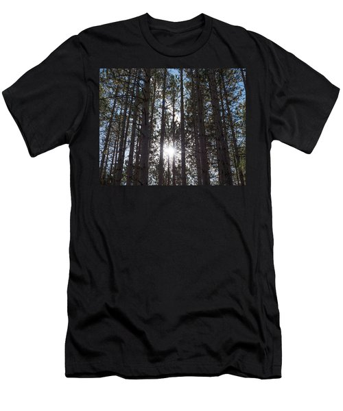 Towering Pines Men's T-Shirt (Athletic Fit)