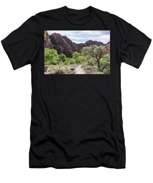 Trail Into Phantom Ranch, Grand Canyon Men's T-Shirt (Athletic Fit)