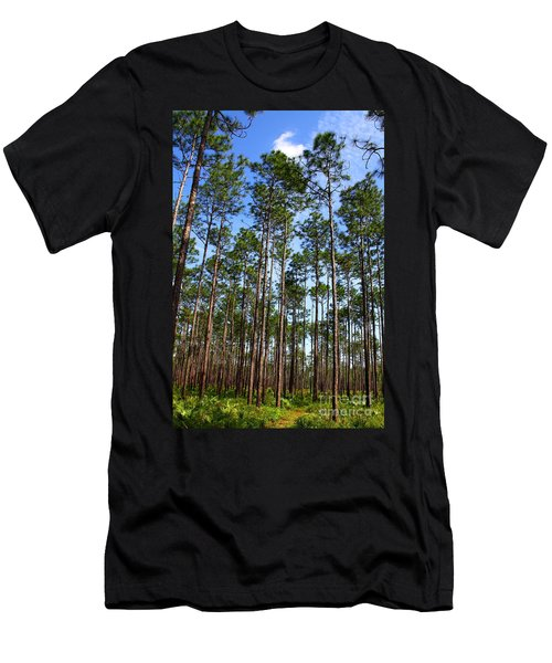 Trail Through The Pine Forest Men's T-Shirt (Athletic Fit)