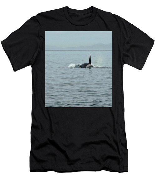 Transient Killer Whale Men's T-Shirt (Athletic Fit)