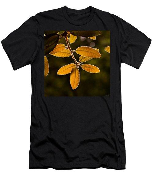 Translucent Leaves Men's T-Shirt (Athletic Fit)
