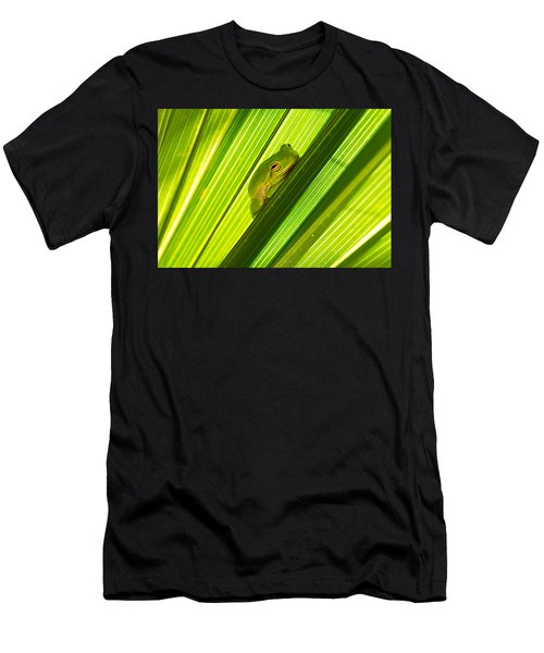 Tree Frog And Palm Frond Men's T-Shirt (Athletic Fit)