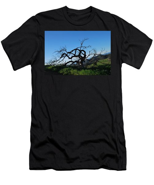 Men's T-Shirt (Athletic Fit) featuring the photograph Tree Of Light - Slanted Horizon by Matt Harang