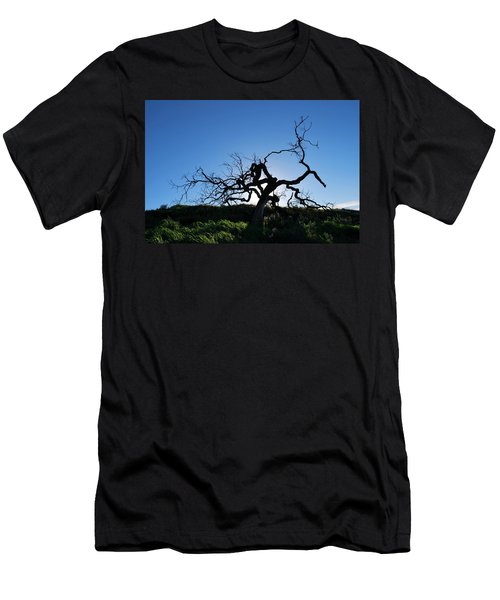 Men's T-Shirt (Athletic Fit) featuring the photograph Tree Of Light - Straight View by Matt Harang