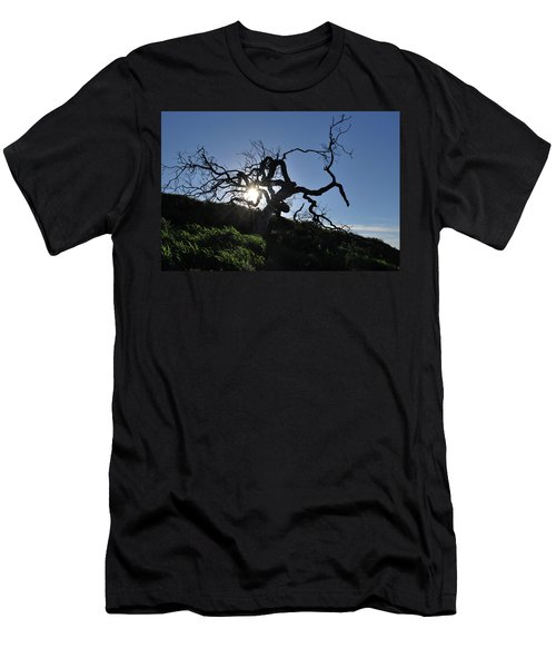 Men's T-Shirt (Athletic Fit) featuring the photograph Tree Of Light - Sunshine Through Branches by Matt Harang