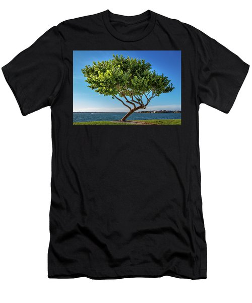 Tree On The Bay Men's T-Shirt (Athletic Fit)