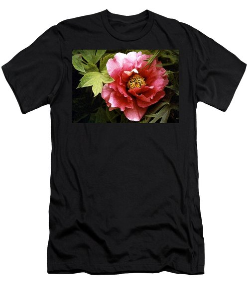 Tree Peony Men's T-Shirt (Athletic Fit)