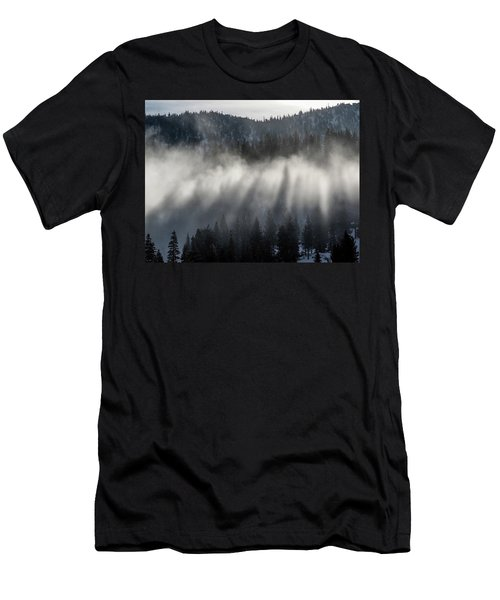 Tree Shadows Men's T-Shirt (Athletic Fit)
