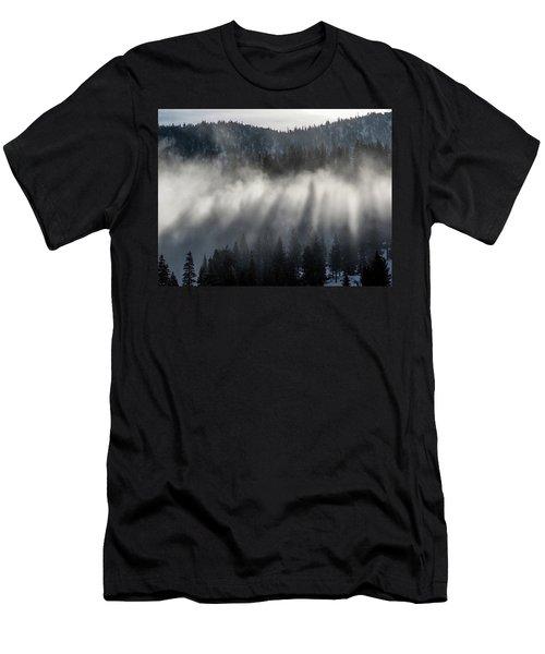 Tree Shadows Men's T-Shirt (Athletic Fit)