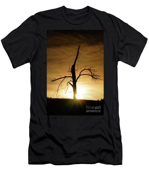 Tree Silhouette At Sundown Men's T-Shirt (Athletic Fit)