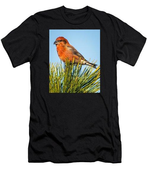 Tree Top Men's T-Shirt (Athletic Fit)