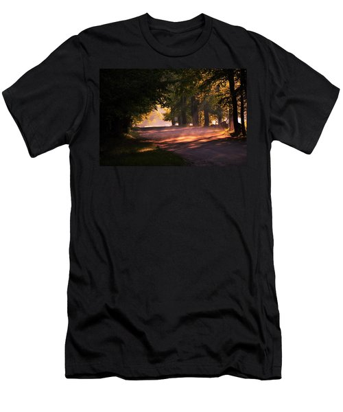 Tree Tunnel Men's T-Shirt (Athletic Fit)