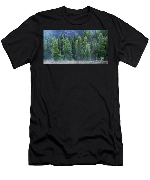 Trees In The Mist Men's T-Shirt (Athletic Fit)