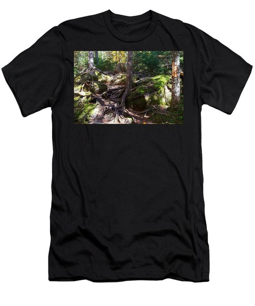 Trees - Mont Tremblant National Park Men's T-Shirt (Athletic Fit)