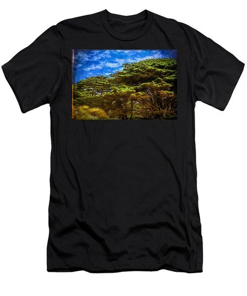 Trees On An Oregon Beach Men's T-Shirt (Athletic Fit)