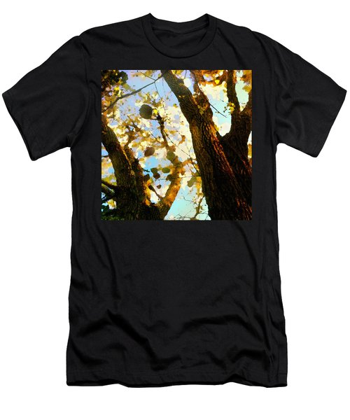 Treetop Abstract-look Up A Tree Men's T-Shirt (Athletic Fit)