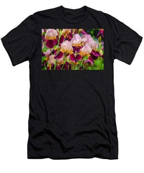 Tricolored Irisses Men's T-Shirt (Athletic Fit)