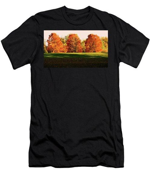 Trinity Trees Men's T-Shirt (Athletic Fit)