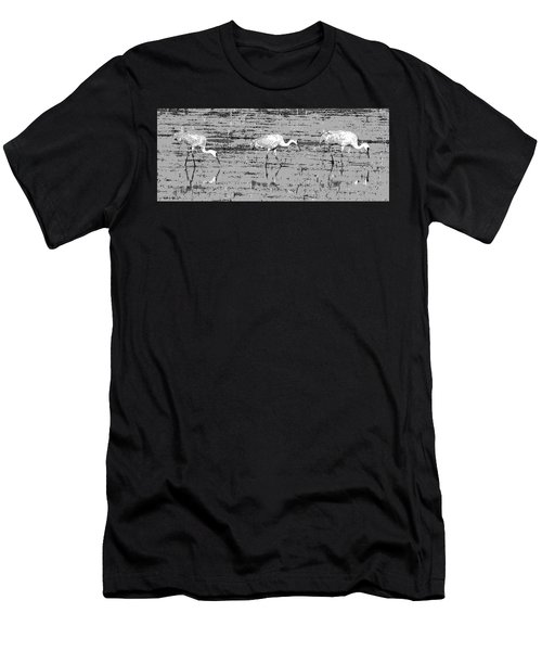 Trio Of Cranes Men's T-Shirt (Athletic Fit)