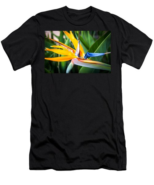 Tropical Closeup Men's T-Shirt (Athletic Fit)