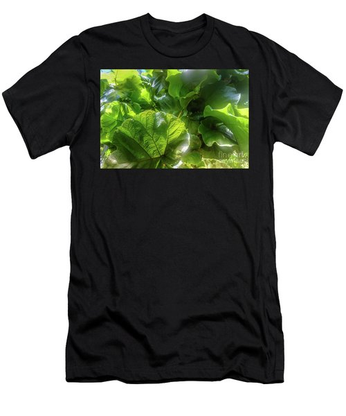 Tropical Forest Men's T-Shirt (Athletic Fit)