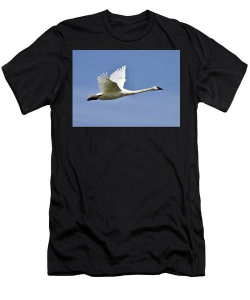 Trumpeter Swan In Flight Men's T-Shirt (Athletic Fit)