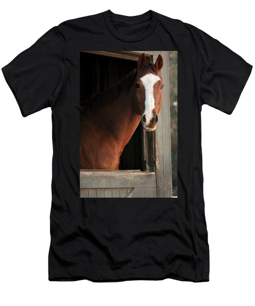Men's T-Shirt (Slim Fit) featuring the photograph T's Window by Angela Rath