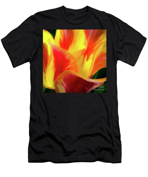 Tulip In Bloom Men's T-Shirt (Athletic Fit)