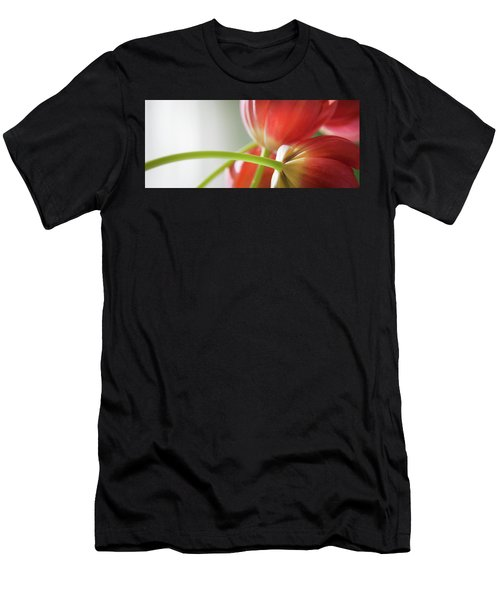 Tulips In The Morning Men's T-Shirt (Athletic Fit)