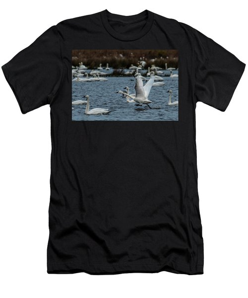 Tundra Swan And Liftoff Head Start Men's T-Shirt (Athletic Fit)
