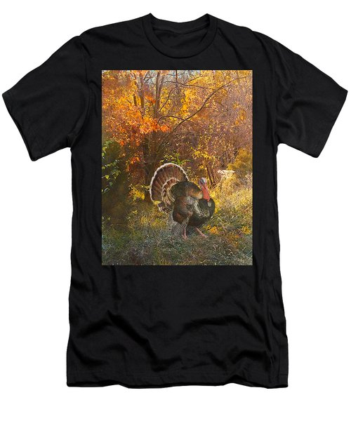 Turkey In The Woods Men's T-Shirt (Athletic Fit)