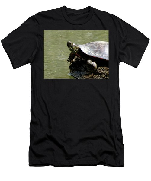 Turtle Bask Men's T-Shirt (Athletic Fit)