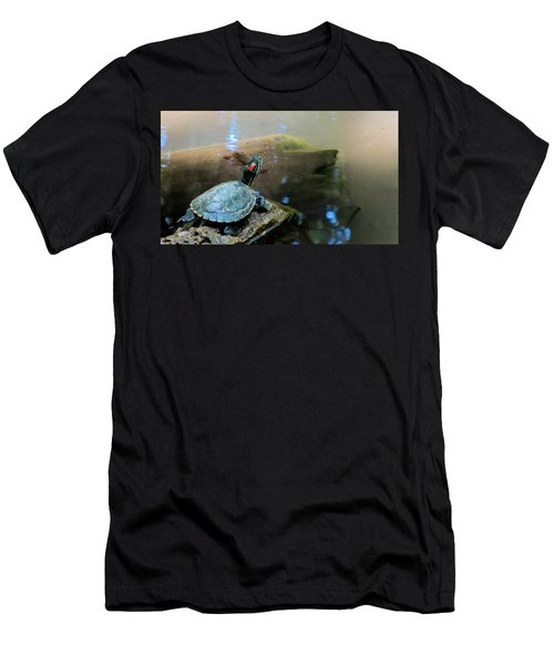 Turtle On Rock Men's T-Shirt (Slim Fit) by Mark Barclay