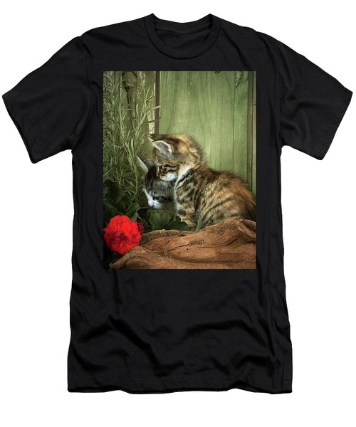 Two Cute Kittens Men's T-Shirt (Athletic Fit)