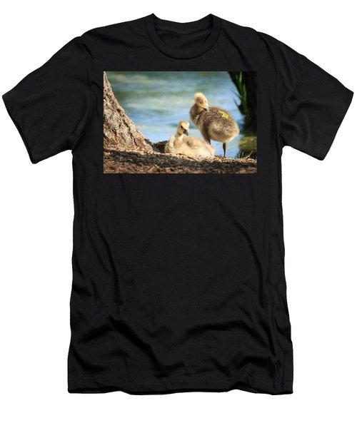 Two Little Goslings Men's T-Shirt (Athletic Fit)