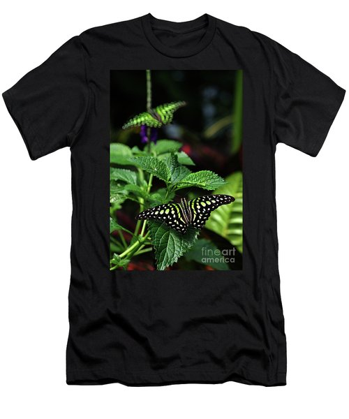 Two Tailed Jay Butterflies- Graphium Agamemnon Men's T-Shirt (Athletic Fit)