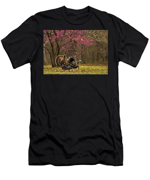 Two Tom Turkey And Redbud Tree Men's T-Shirt (Athletic Fit)