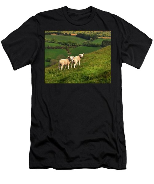 Two Welsh Lambs Men's T-Shirt (Athletic Fit)