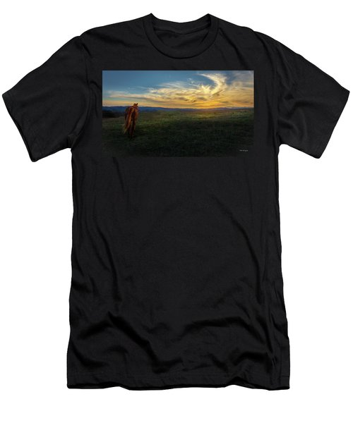 Under A Bright Evening Sky Men's T-Shirt (Athletic Fit)