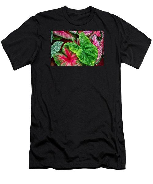 Under The Oak Men's T-Shirt (Athletic Fit)