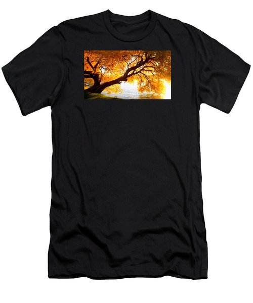 Under The Yellow Tree Men's T-Shirt (Athletic Fit)