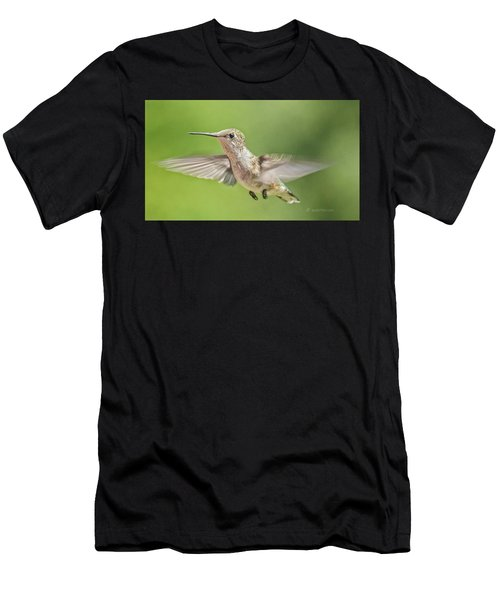 Untitled Hum_bird_three Men's T-Shirt (Athletic Fit)