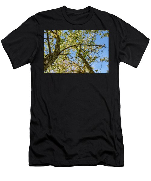 Up A Tree Men's T-Shirt (Athletic Fit)
