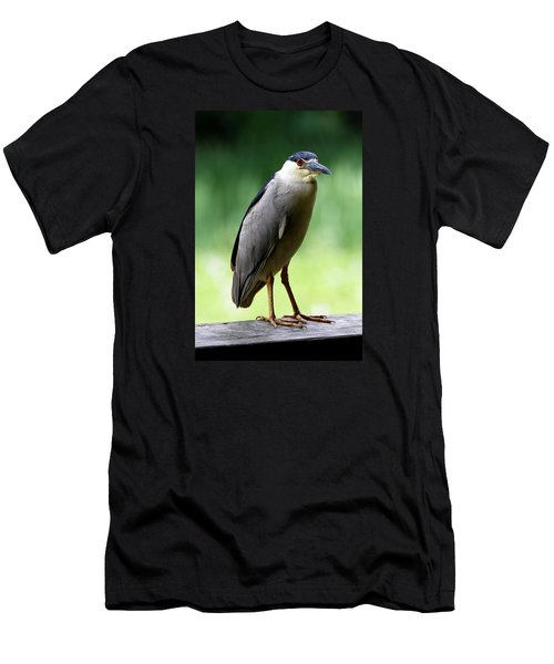 Upstanding Heron Men's T-Shirt (Athletic Fit)