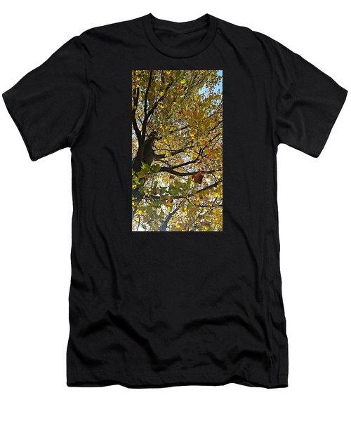Upward Men's T-Shirt (Slim Fit) by Jana E Provenzano