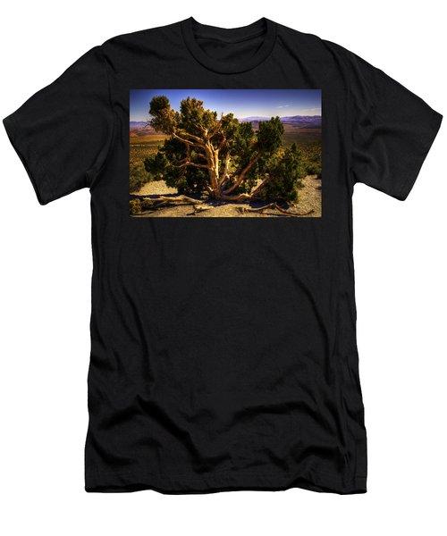 Utah Juniper At High Point Red Rock Canyon Men's T-Shirt (Athletic Fit)