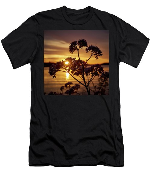 Valerian Sunset Men's T-Shirt (Slim Fit) by Jouko Lehto