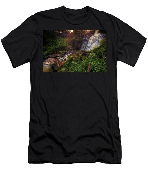 Valley Of Golden Light Men's T-Shirt (Athletic Fit)